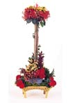 floradream plant
